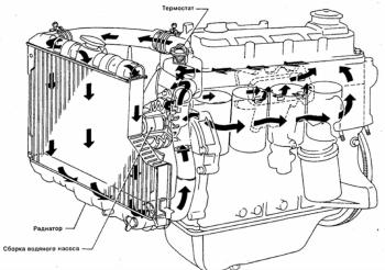 Схема движения охлаждайки в TD27, QD32. Т.к. именно с них и скопирыван НАШ мотор. - СХЕМА ОХЛАЖДАЙКИ..png